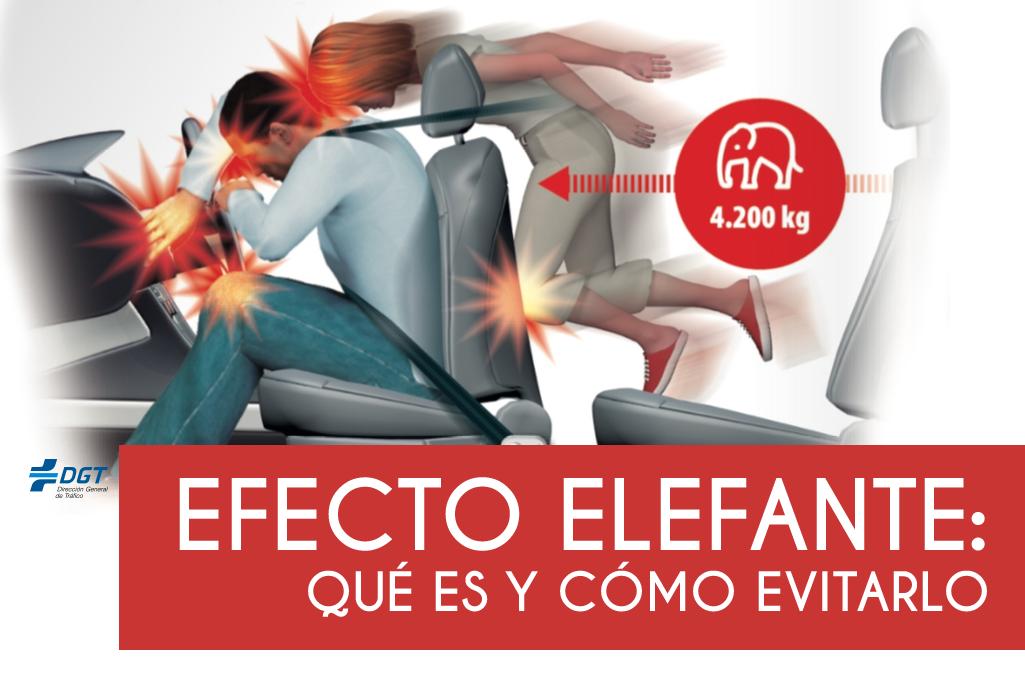 Efecto elefante: qué es y cómo evitarlo